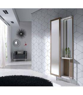 Mueble para Recibidor con Espejo Vestidor Modelo BIZKAIA