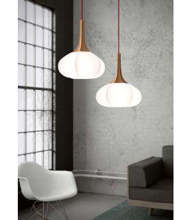 Comprar online Lámpara de techo Modernas : Modelo SWELL
