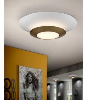 Plafón de Diseño en Pan de oro : Modelo HOLE
