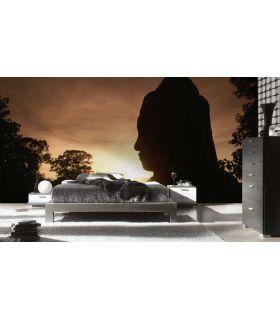 Comprar online Murales Fotográficos : Modelo NIGHTBUDA