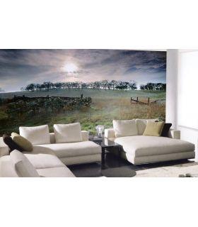 Comprar online Murales Fotográficos : Modelo ESCOCIA