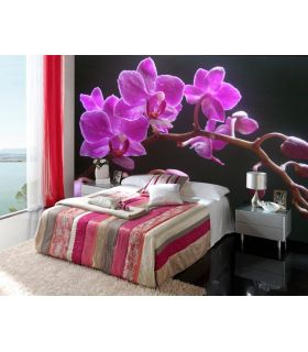 Comprar online Murales Fotográficos : Modelo ORQUIDEA