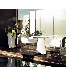 Comprar online Mesa de Diseño : Colección PEZZETTINA