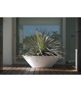 Comprar online Macetero de diseño : Colección CENTRO ALTO