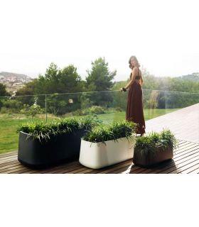 Comprar online Macetero de diseño : Colección VASIJA Jardinera
